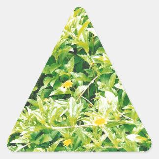 Flores y plantas del verano pegatina triangular