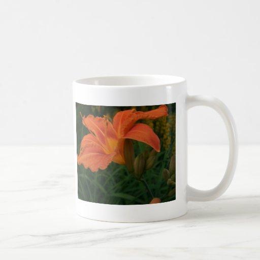 Flores y plantas taza