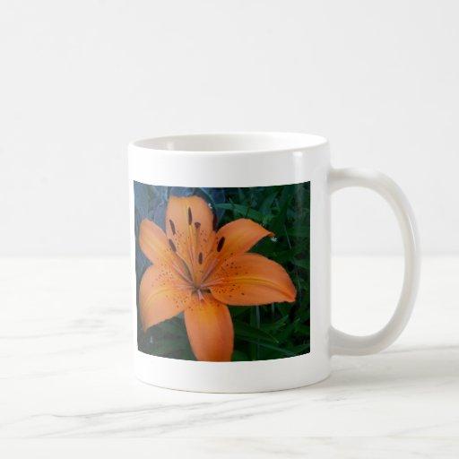 Flores y plantas taza básica blanca