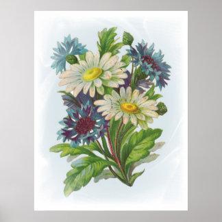 Flores y poster azules de las margaritas