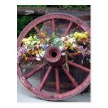 Flores y rueda de carro postales