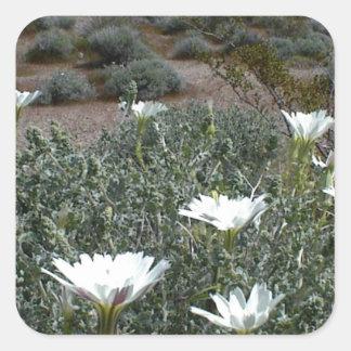 Flores y Sagebrush salvajes del desierto Pegatinas Cuadradases