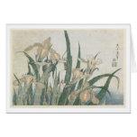 Flores y saltamontes, c.1830-31 del iris tarjeta de felicitación