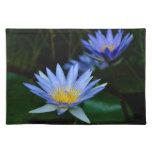 Flores y significado de loto hermosas mantel individual
