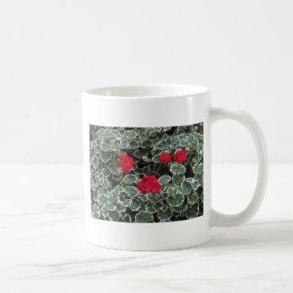 Flores zonales del geranio (Pelargonium Hortorum) Tazas De Café