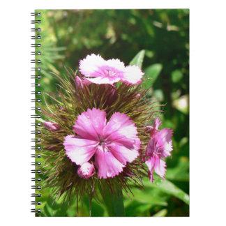 florescence notebooks
