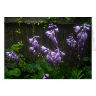 Floretes púrpuras del Hosta Tarjeta De Felicitación