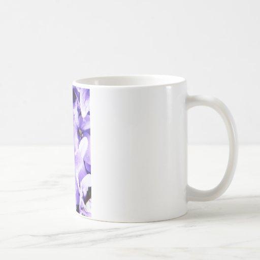 Florezca el fashi agradable magnífico lindo de la  tazas de café