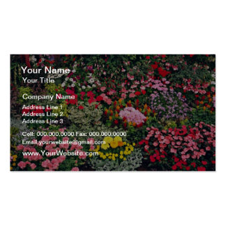 Florezca la exposición, demostración del condado,  tarjetas de visita