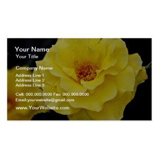 Floribunda, flores blancas del amarillo tarjeta de visita