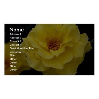Floribunda hermoso, amarillo tarjeta de visita
