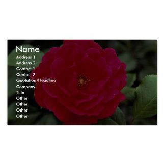 Floribunda precioso tarjetas de visita