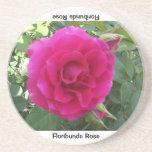 Floribunda Rose Coaster