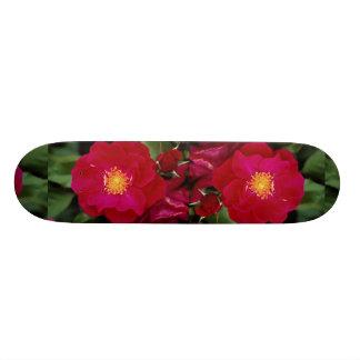 Floribunda 'Showbiz' Roses Skate Boards