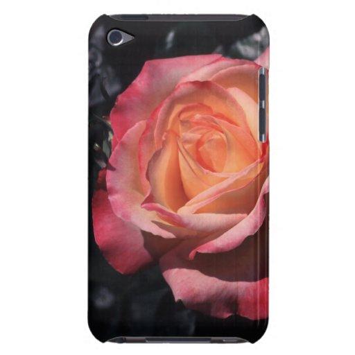 Floribunda subió el perfume de Sheila Funda iPod