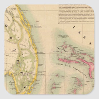 Florida 62 square sticker