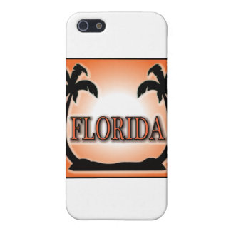 Florida Airbrushed Look Orange Sunset Palm Trees Case For iPhone SE/5/5s