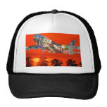 florida airlines mesh hat