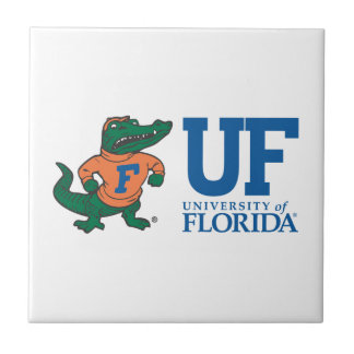 Florida Albert With Hat - Blue Small Square Tile
