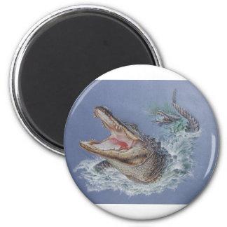 Florida Alligator 2 Inch Round Magnet