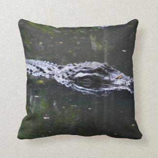 florida alligator head in water pillow