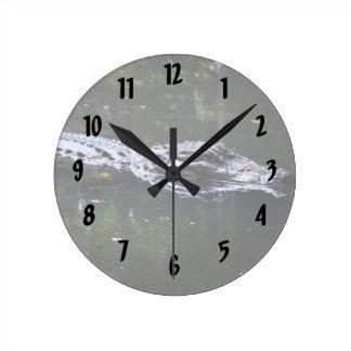 florida alligator head in water round clock