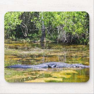 Florida Alligator Mouse Pad