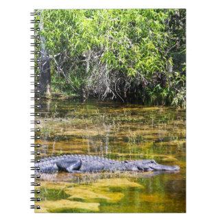 Florida Alligator Spiral Notebook