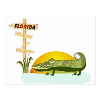 Florida Alligator Vacation Postcard