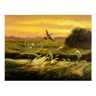Florida Alligators Postcard