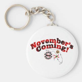 Florida Anti ObamaCare – November's Coming! Keychain
