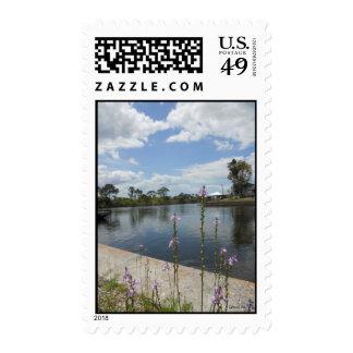 Florida Backyard Stamp