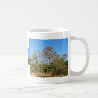 Florida Bald Cypress on a swampy ranch Classic White Coffee Mug