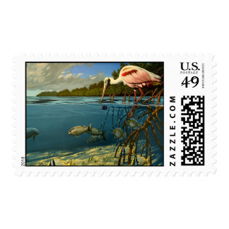 Florida Bay, Family Stamp