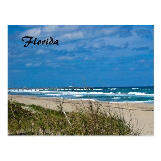 Florida Beach and Pier Postcard