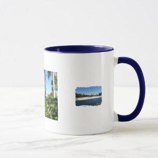florida beach, birds, flamingos mug