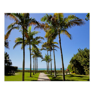 FLORIDA BEACH PALM TREES TROPICAL  PARK POSTER