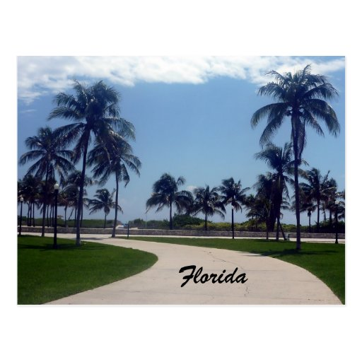 florida beach path post cards