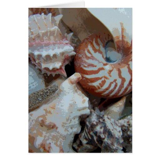 Florida Beach shells Card