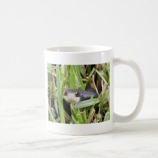 Florida Black Racer Coffee Mug