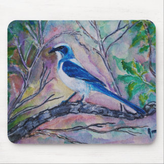 Florida Blue Jay - Mouse Pad
