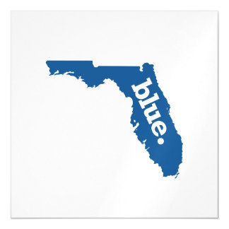 FLORIDA BLUE STATE MAGNETIC CARD