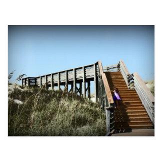 Florida boardwalk, Cape San Blas Gulf Coast Postcard