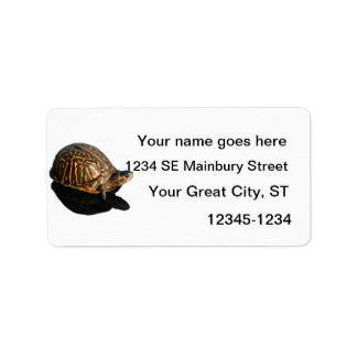 Florida Box turtle Photograph with Shadow Cutout Address Label