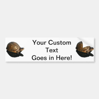 Florida Box turtle Photograph with Shadow Cutout Car Bumper Sticker