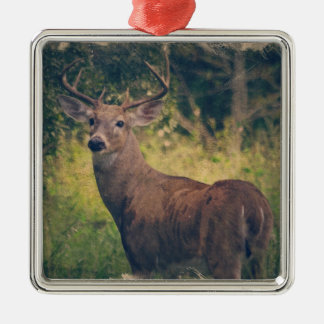 Florida Buck Metal Ornament