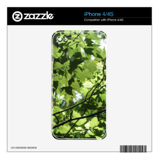 Florida Canopy iPhone 4S Decals