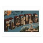 Florida (Capital Building) - Large Letter Postcard