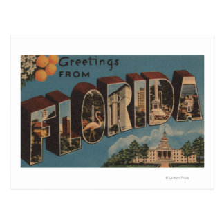 Florida (Capital Building) - Large Letter Postcard