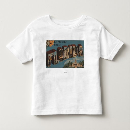 Florida (Capital Building) - Large Letter T Shirts
